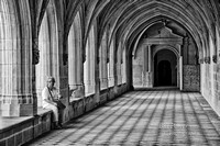 Resting in the Cloister